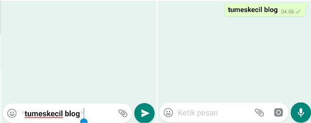 Salah satu aplikasi chatting yang popularitasnya rata tersebar di seluruh dunia ialah Wha 8 Cara Paling Praktis Mengubah Gaya Teks (Font) di WhatsApp